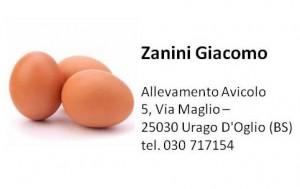 54 Zanini uova