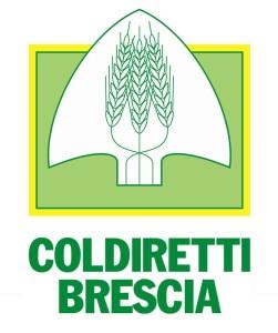 logo centrato Coldiretti BS